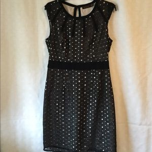 Dresses & Skirts - THE LIMITED Dress Black with Cream Color Lining